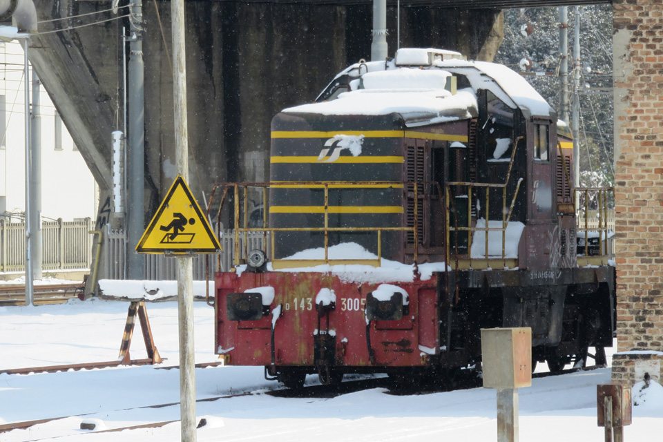 Treno innevato