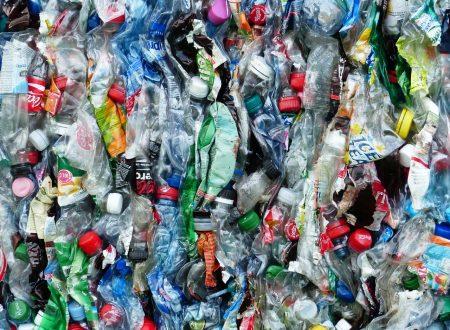 Plastica monouso a Pesaro